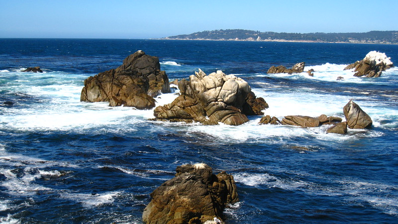 Point Lobos 2007