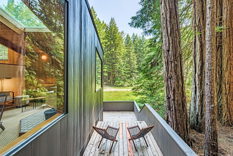Side Deck Among the Redwoods