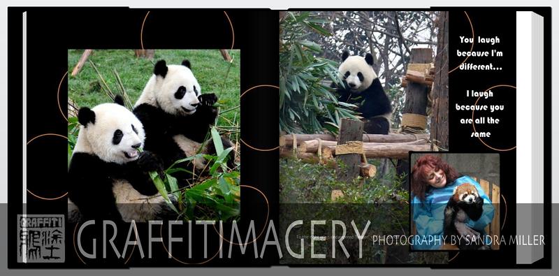Screen shot 2010-09-23 at 2.22.18 PM.png