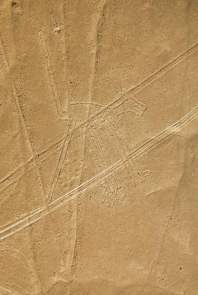 Nazca - August '09-10.jpg
