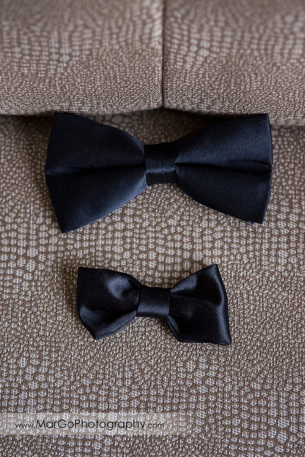 groom and his son's bow ties at Pleasanton Marriott