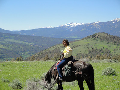 Landscapes: Montana