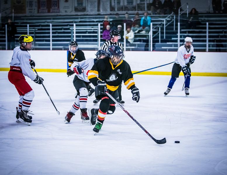 Bruins2-267.jpg