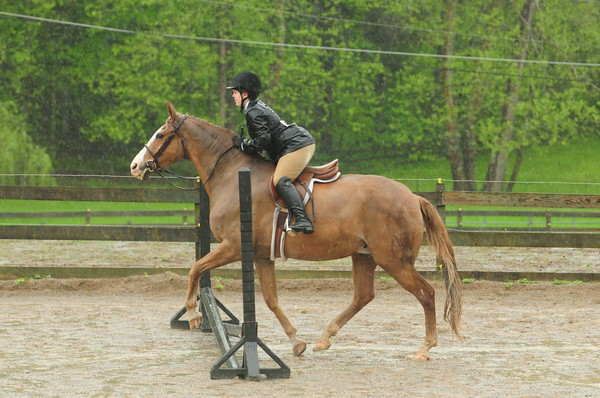 59-Beginner Rider Equitation