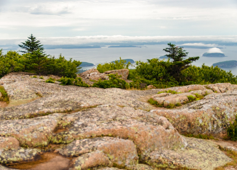 Acadia Nat'l Park-Terry's - July 2017-65.jpg