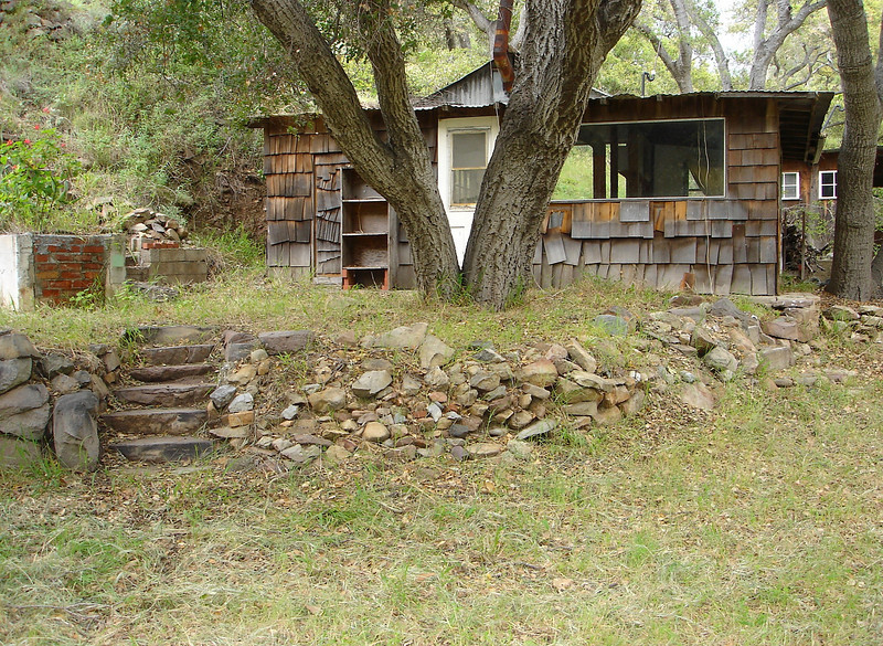 That shelf to the left of the oak tree was where I kept my bank of marine batteries that were charged by a small array of photovoltaic solar panels just up the slope, and that powered our household.