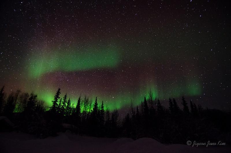USA-Alaska-Wiseman-Aurora-2731.jpg