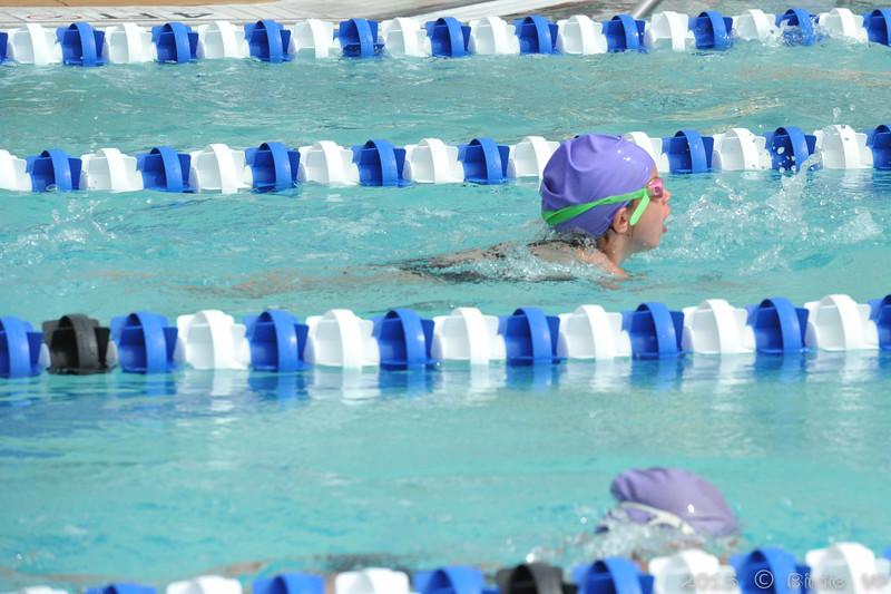 2015-06-20_HAC_SwimMeet_v_Westminster@HAC_HockessinDE_110.jpg
