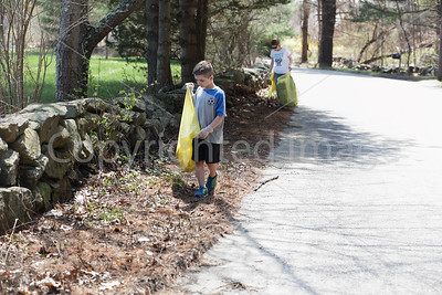 Townwide Cleanup