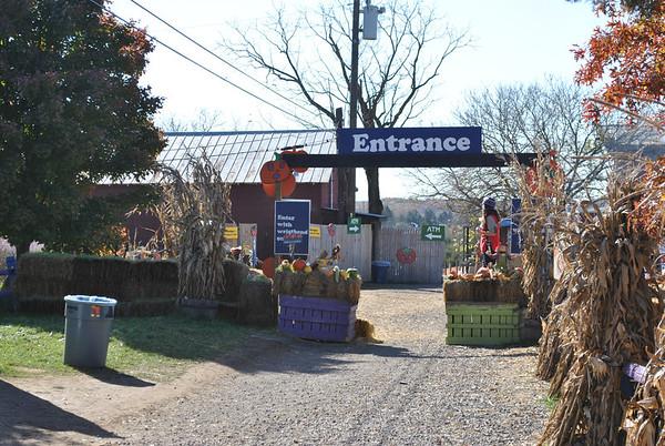 Cox Farms 2011