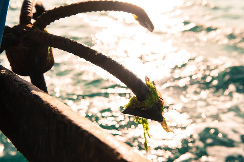 Zanzibar-139.jpg