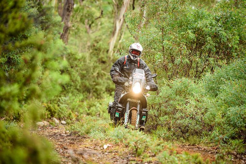 2019 KTM Australia Adventure Rallye (452).jpg