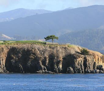 Landscapes Non-Marin