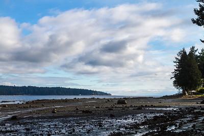 Fanny Bay Beach Walk