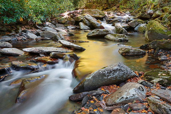 Beauty In The Great Smoky Mountains National Park