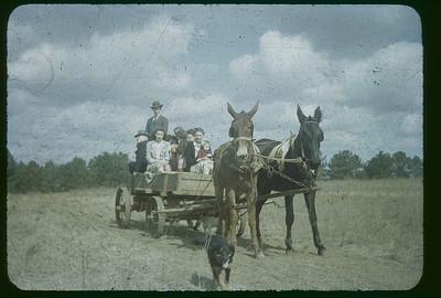 Koinonia 1940-60