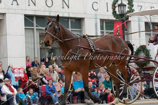Lebanon Horse Parade '12