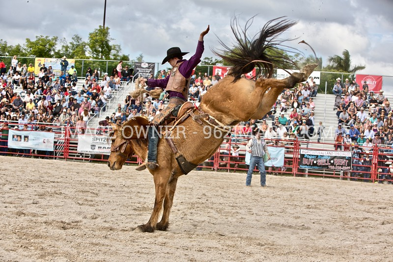 Homestead rodeo 2018
