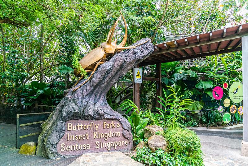 Butterfly-Park-9895.jpg
