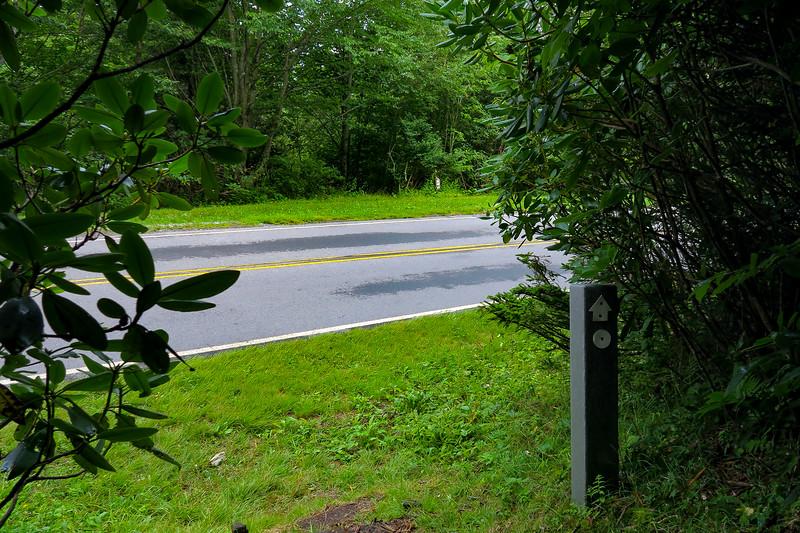 Mountains-to-Sea Trail @ NC-128 - 5,400'
