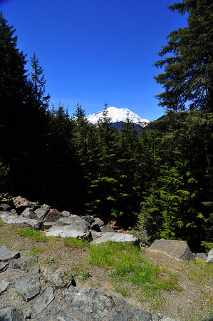 mt. rainier loop 6-22-2010