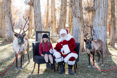 ReindeerLloyd
