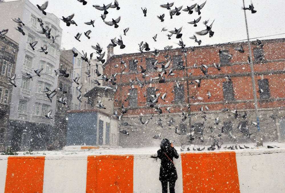 Description of . Snow falls as a woman takes a photo of pigeons in Istanbul, on January 8, 2013. Heavy snowfall blanketed Turkey's commercial hub Istanbul, a city of 15 million, paralysing daily life, disrupting air traffic and land transport. Officials said the snow is expected to continue until late tomorrow, according to the weather forecast. BULENT KILIC/AFP/Getty Images