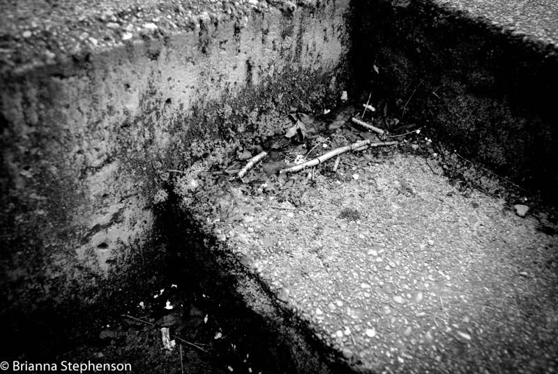 untitled-0039-2.jpg