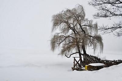 Budd Lake, NJ