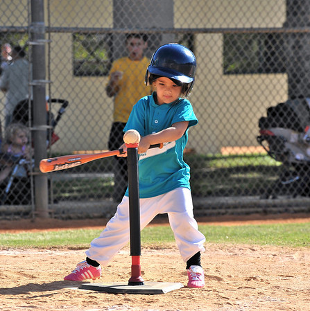 2009-04-19 - Dylan's tee ball game