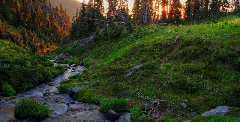 Sunrise in Summerland meadow