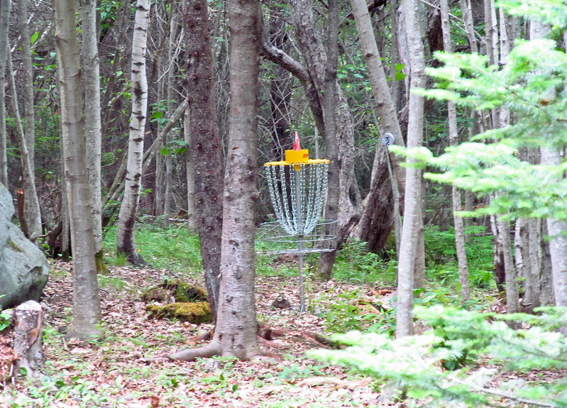 CP_Pen_disc_golf_hole_one_062817_ML.jpg