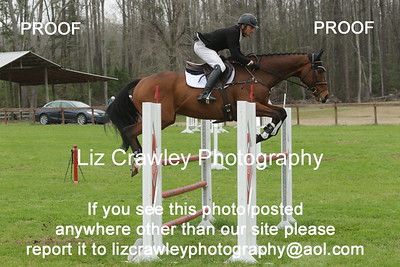 PINE TOP ADVANCED 2.22.2019  PLEASE CUT AND PASTE THIS LINK INTO YOUR BROWSER IF YOU WOULD LIKE TO ORDER DIGITAL PHOTOS: www.lizcrawleyphotography.com/eventing-ordering