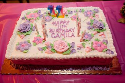 Camila's Eleventh Birthday Party - December 12, 2010