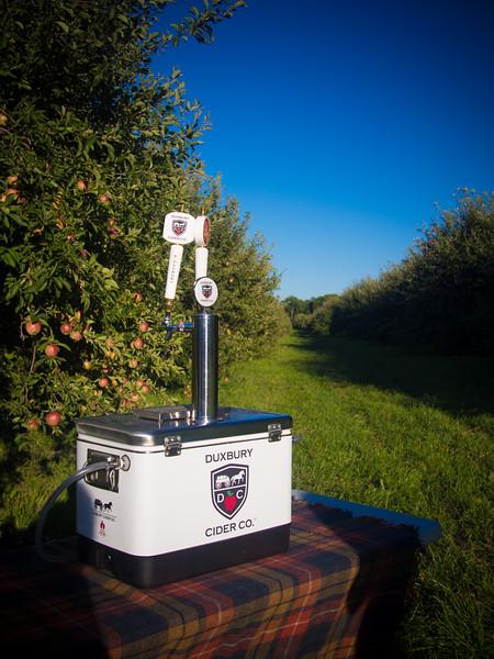 duxbury cider in field.jpg