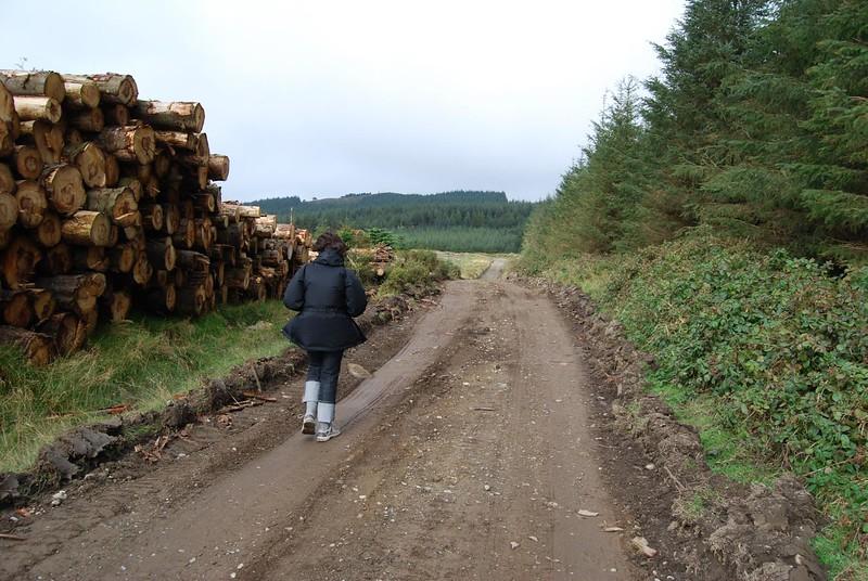 Ireland_09_08_024.jpg