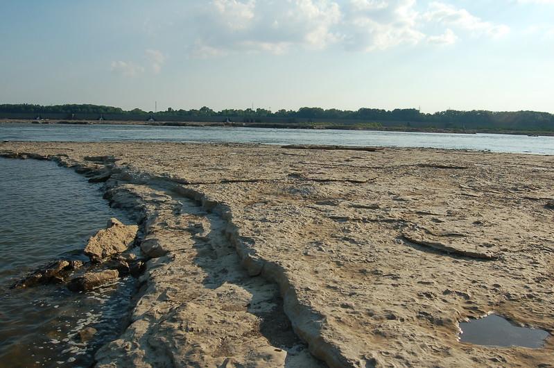 Falls-ohio-coral-reef-devonian-fossil1.JPG