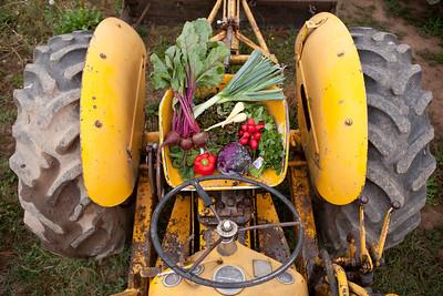 Siri & Son Farms