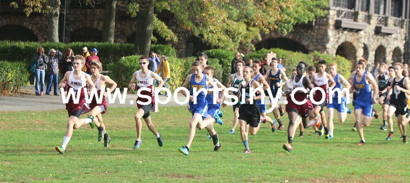 Section IX Cross-Country Championships 11-3-17