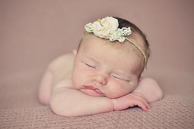 Lauren | Newborn