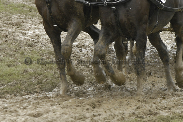 The Mud Was Deep