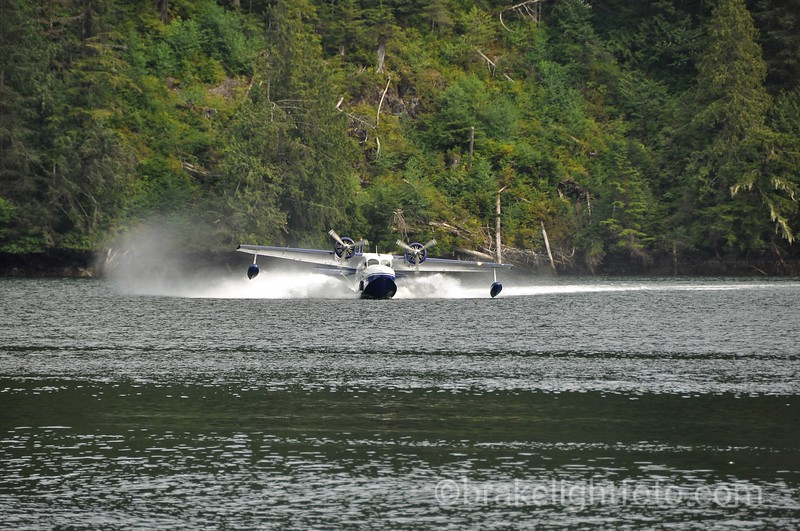A Pacific Coastal Grumman Goose lands at Klemtu