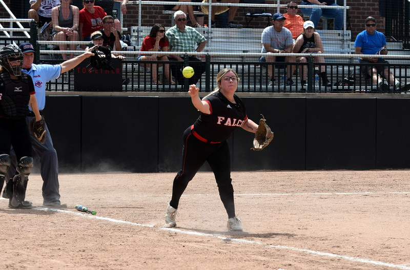 Divine Child took on South Haven in a Division 2 state semifinal on Thursday at Michigan State University. The Falcons fell to the tough Rams squad by a score of 14-0. Photo by Frank Wladyslawski - The Press & Guide