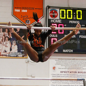 Gymnastics Meet 1/2/13