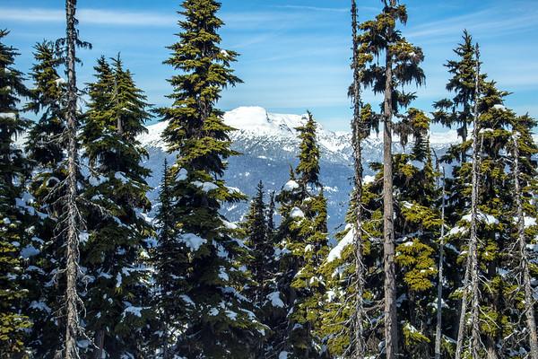 Whistler Blackcomb Canada