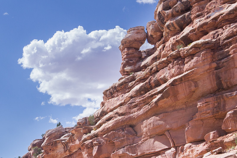 Moab Aug 2015-5520.jpg