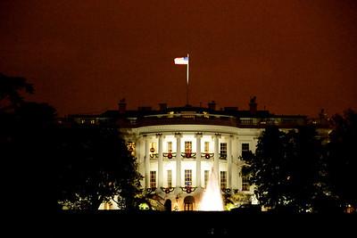 12-20-2008 White House Christmas Tree