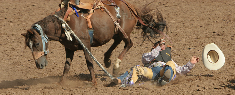 Rodeo  1135.jpg