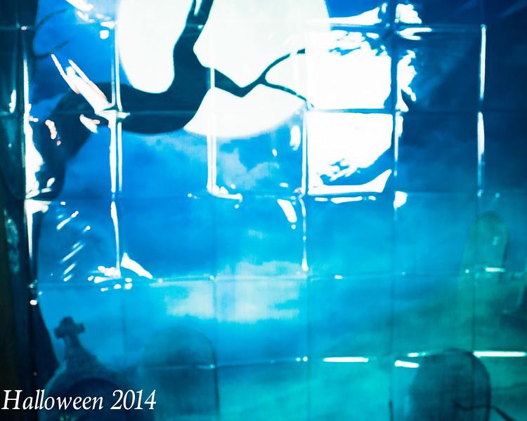 Halloween 2014 (1393 of 938).jpg
