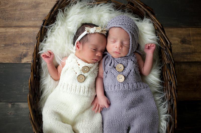 twins (20 of 35).jpg